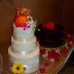 Budget Cake - Haute Cakes Austin